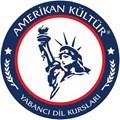Amerikan Kültür E.